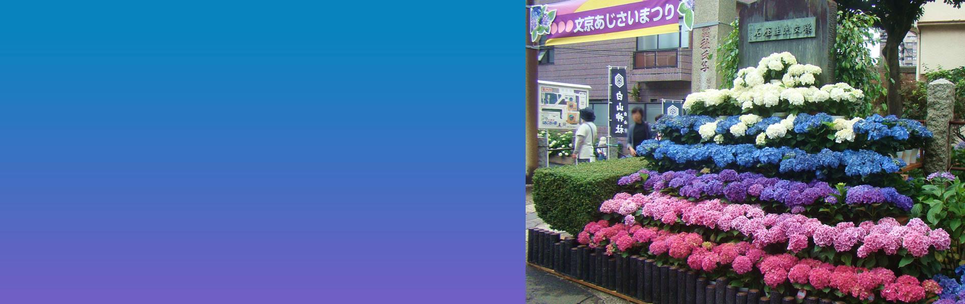 東京本郷ロータリークラブ